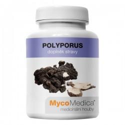 Polyporus Suplement diety