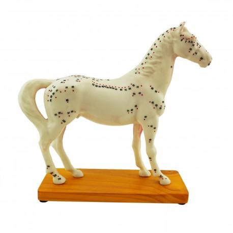 Model akupunkturowy konia - 27 cm