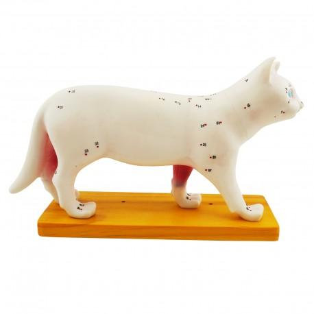 Model akupunkturowy kota - 30 cm
