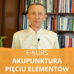 E- Kurs Akupunktura Pięciu Elementów