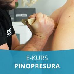 E- Kurs Pinopresura