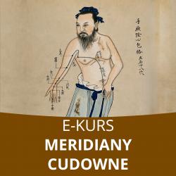 E- Kurs Meridiany cudowne w praktyce doktora Gelmana