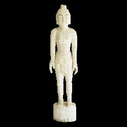Drewniany model akupunkturowy człowieka - 160 cm