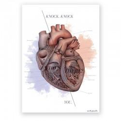 Plakat anatomiczny - budowa serca - 50 x 70 cm