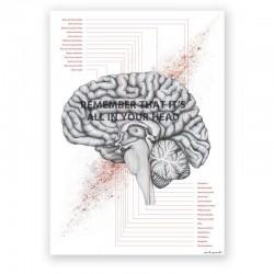 Plakat anatomiczny - przekrój mózgu - 50 x 70 cm