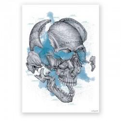 Plakat dekoracyjny - czaszka - 50 x 70 cm