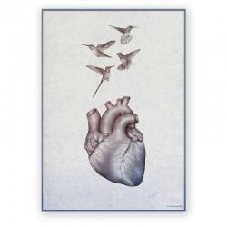 Plakat dekoracyjny - serce i kolibry - 50 x 70 cm