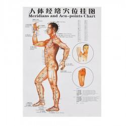 Plakat człowieka - bok - 76 cm x 47 cm