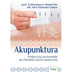 Akupunktura - Praktyczny przewodnik po chińskiej sztuce medycznej